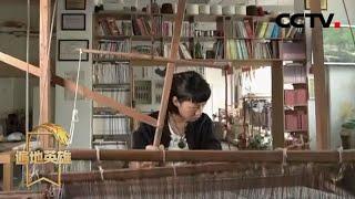 《遍地英雄》 20200611 现代织女的多彩人生|CCTV农业