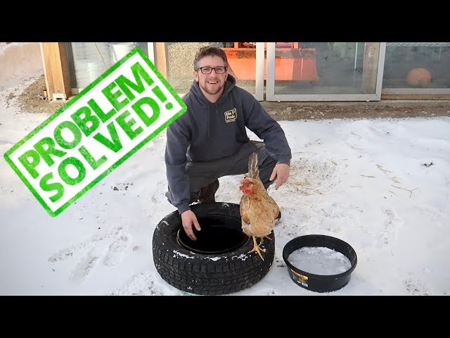 Keeping Water From Freezing (Solved) Testing our new Winter  Waterers
