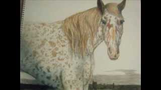 Appaloosa Horse Speed Painting / Drawing in Crayon