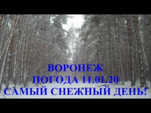 ВОРОНЕЖ. ПОГОДА 11.01.20. САМЫЙ СНЕЖНЫЙ ДЕНЬ!!!