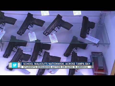 Tampa Bay area students walk out advocating for gun laws reform