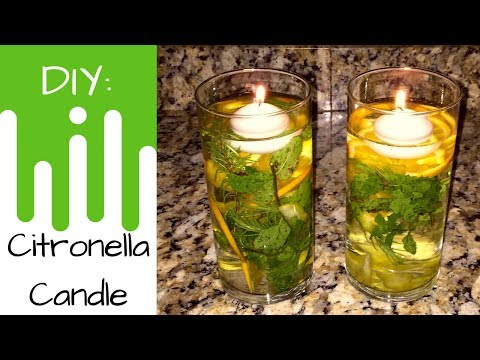 Essential Oils | DIY Citronella Floating Candle