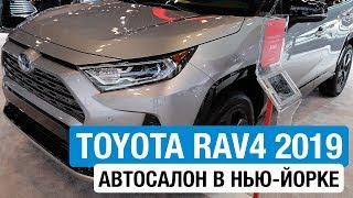 Toyota RAV4 2019 // Павел Блюденов