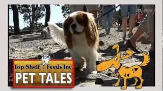 Top Shelf Feeds Pet Tales - Episode 6 - Shaw Tv Nanaimo