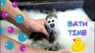Baby Monkey oLLie Red Cup Bubble Bath