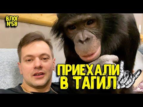 Приехали в Нижний Тагил / Распаковка
