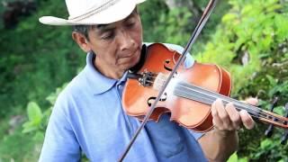 Vinuete para Xantolo en Xilitla - Trio Renovación Huasteca