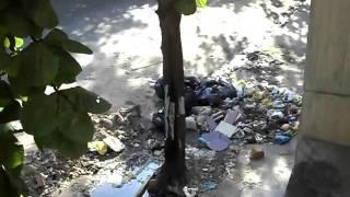 Lixo em Triagem, Rio de Janeiro. Data: 27/04/10.