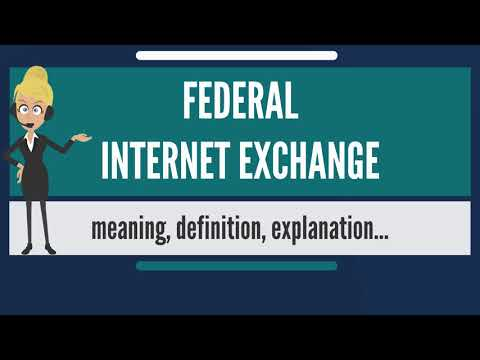 What is FEDERAL INTERNET EXCHANGE? What does FEDERAL INTERNET EXCHANGE mean?