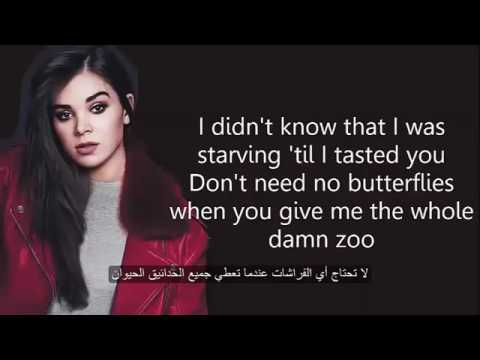 Starving Lyrics   Hailee Steinfeld ft  Grey   Zedd مترجم