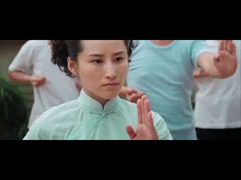 Download FILM ARTS MARTIAUX WING CHUN &GRAND MAÎTRE YP MAN EN FRANÇAIS