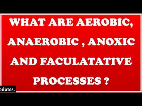 Aerobic, Anaerobic, Anoxic & Facultative Processes