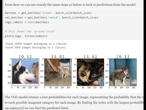 Lesson 1: Practical Deep Learning for Coders