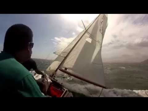 Crazy J/22 sailing in Jamaica