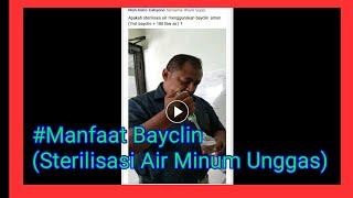 #Manfaat Bayclin ( Sterilisasi Air Minum Untuk Unggas)