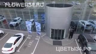 Доставка цветов по воздуху квадрокоптером в Волгограде(Доставка цветов по воздуху квадрокоптером (дроном) в Волгограде. На нашем сайте Вы можете заказать эту уник..., 2016-10-15T15:51:25.000Z)