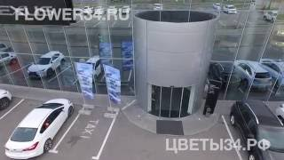 видео доставка цветов
