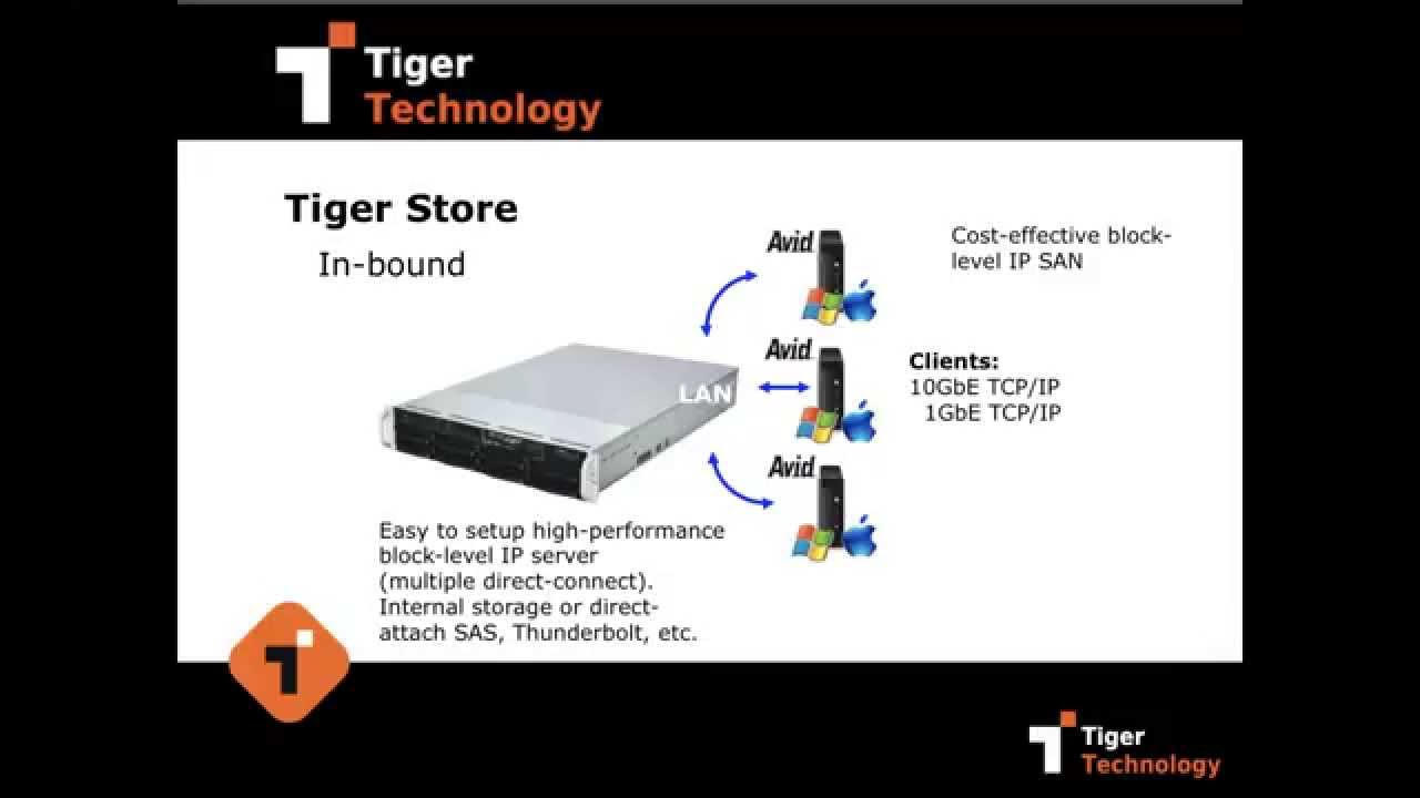 Introduction to Tiger Store