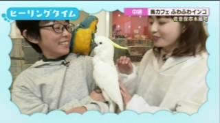 KTNテレビ長崎「ヨジマル!」で生中継されました! 小田さんキレイだっ...