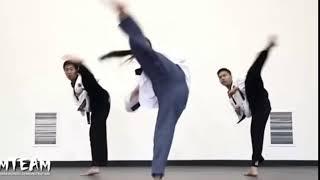 Taekwondo Round Kick (Sports Skills Critique)