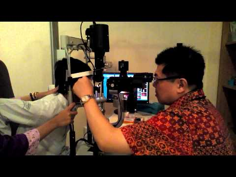 Jec Kedoya Jakarta Jadwal Dokter