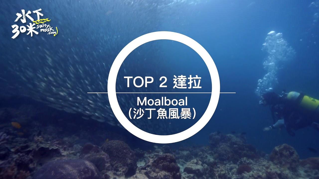 水下三十米TOP5系列 #爆炸多魚群 】 - YouTube