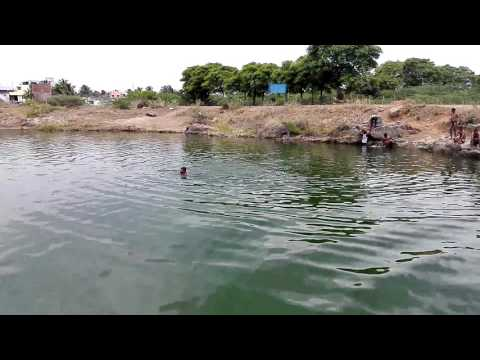 chennai natural swimming pool