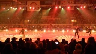 шоу Ледниковый период 11.02.2014 Барнаул