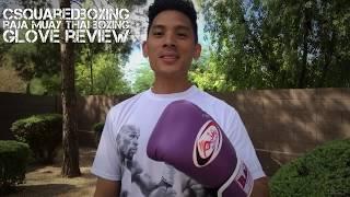 14 Ounce Raja RBGV-1 Muay Thai Boxing Glove Review