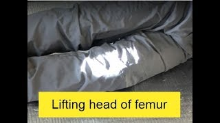 Feldenkrais: Lifting head of femur in the socket フェルデンクライス