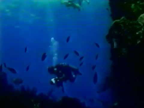 Diving in Saba, Netherlands '92