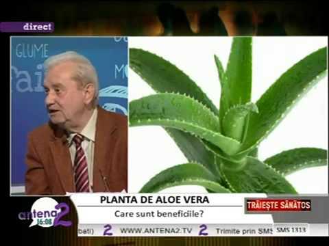 Aloe Vera Gel cu prof dr  Gheorghe Mencinicopschi