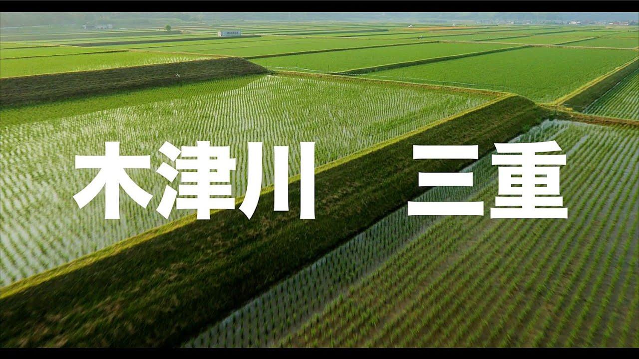 【空の旅#61】「見渡す限り田んぼ・・・」空撮・多胡光純 木津川_Kizugawa aerial
