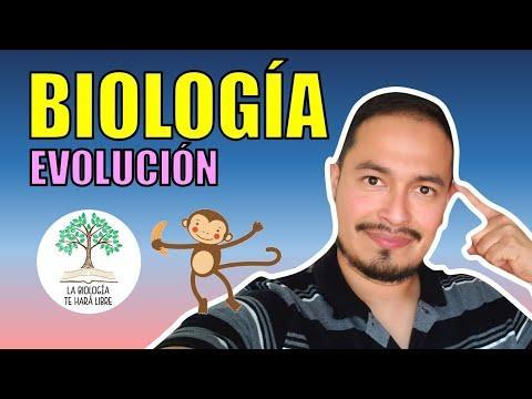 Evolución 1: Las teorías de la evolución