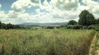 Violin Sonata in A major, III. Ben Moderato: Recitative-Fantasia