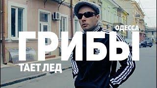 Грибы - Тает Лёд -  Клип Flash Positive - Одесса