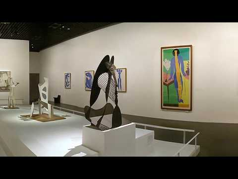 Inside Modern Art Museum with Matisse, Picasso, Braque, P. Gaillard and much more.