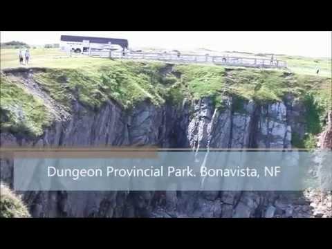 Bus Trip 2014 to Newfoundland Labrador June 30 – July 13 (Nancy's Tours)