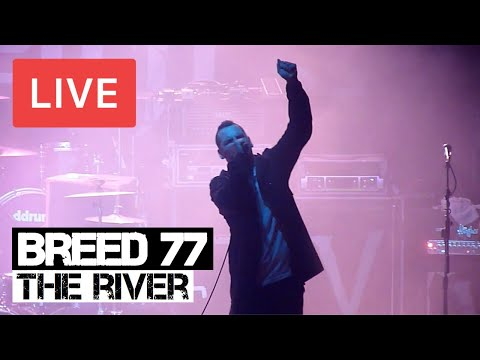 Breed 77 - The River Live in [HD] @ Electric Ballroom - London 2012