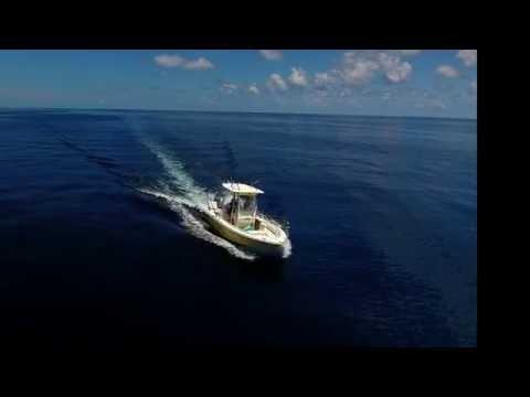 Insane 4K Drone Offshore Fishing - Searching for the Mahi Mahi