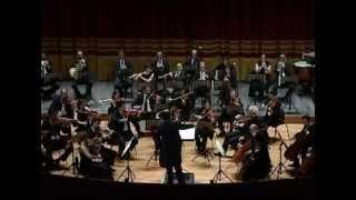 "Haydn: Symphony No.104 ""London"" - 2nd Movement [Gioele Muglialdo, conductor]"