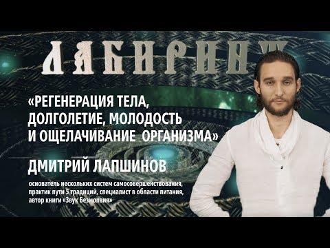 ЛАБИРИНТ | Регенерация тела, долголетие, молодость и ощелачивание организма | Дмитрий Лапшинов