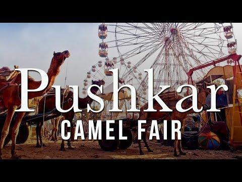 पुष्कर मेला Pushkar Fair 2018   Camel Fair   Incredible Rajasthan   Rajasthan Tourism  India