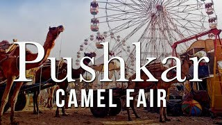 पुष्कर मेला Pushkar Fair 2019 | Camel Fair | Incredible Rajasthan | Rajasthan Tourism| | Cattle Fair