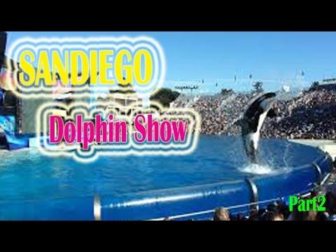 California Travel Destinations & Attractions | Visit Seaworld San Diego Dolphin Show 2016 Part2