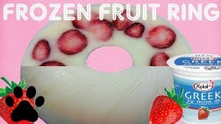Frozen Strawberry Dog Ice Ring - Diy Dog Frozen Yoghurt Ice Cream - A Tutorial By Cooking For Dogs