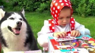 Маша и Медведь играем в Доктора Новые Серии маша мультик собака хаски мультфильм распаковка набор