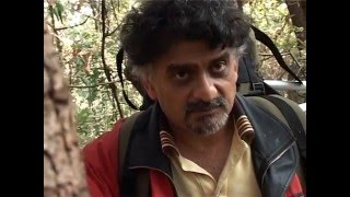 CHAOS IN THE CALM - Dr Swaroop Savanur