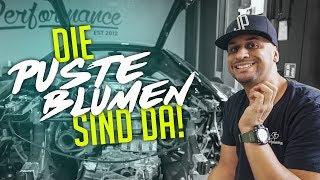 Jp Performance - Die Pusteblumen Sind Da! | Audi R8 V10 Plus Turbo