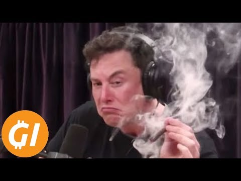 """BTC """"Could Hit $1 Million"""" - Elon Musk's Crazy Bitcoin Tweet - Rise Of The Tether Alternatives"""